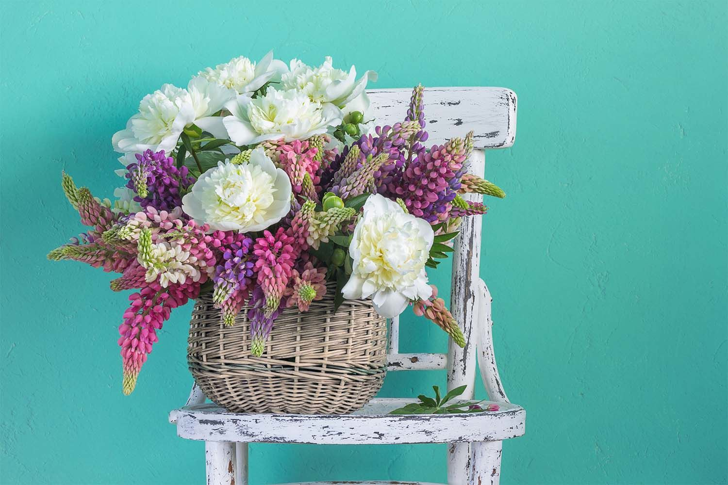 Same day flower delivery available in mackay qld mackay florist at starcut flowers we are same day delivery florists that offer you the best service in mackay and the most reasonable prices for what we do izmirmasajfo
